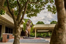 The bear statue on the Atlanta campus.