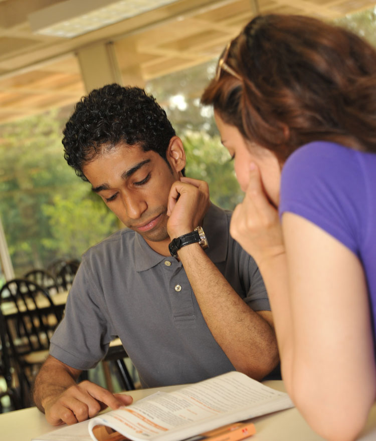 Students study.