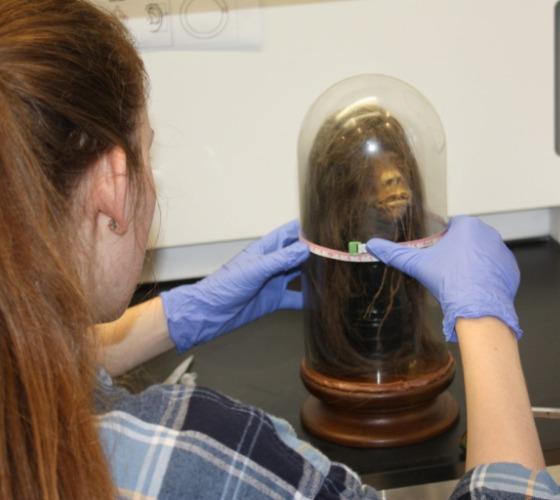 Mercer University student Amy Jenkins examines the tsantsa.